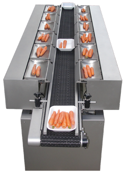 Multihead Linear Weigher